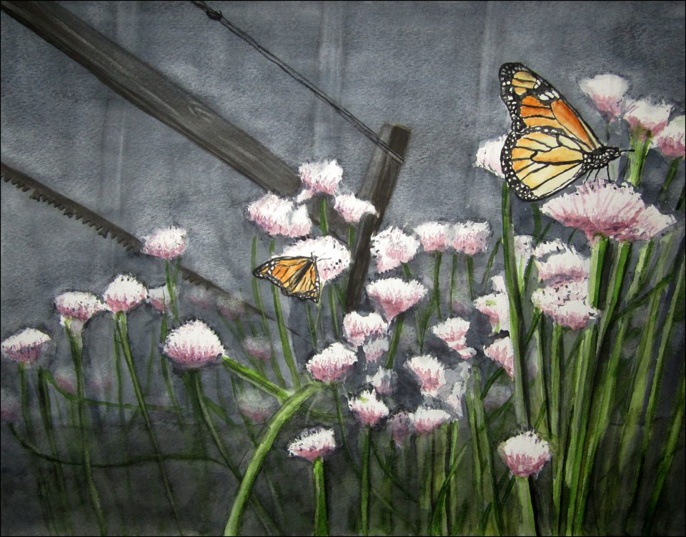 Monarchs on Chives